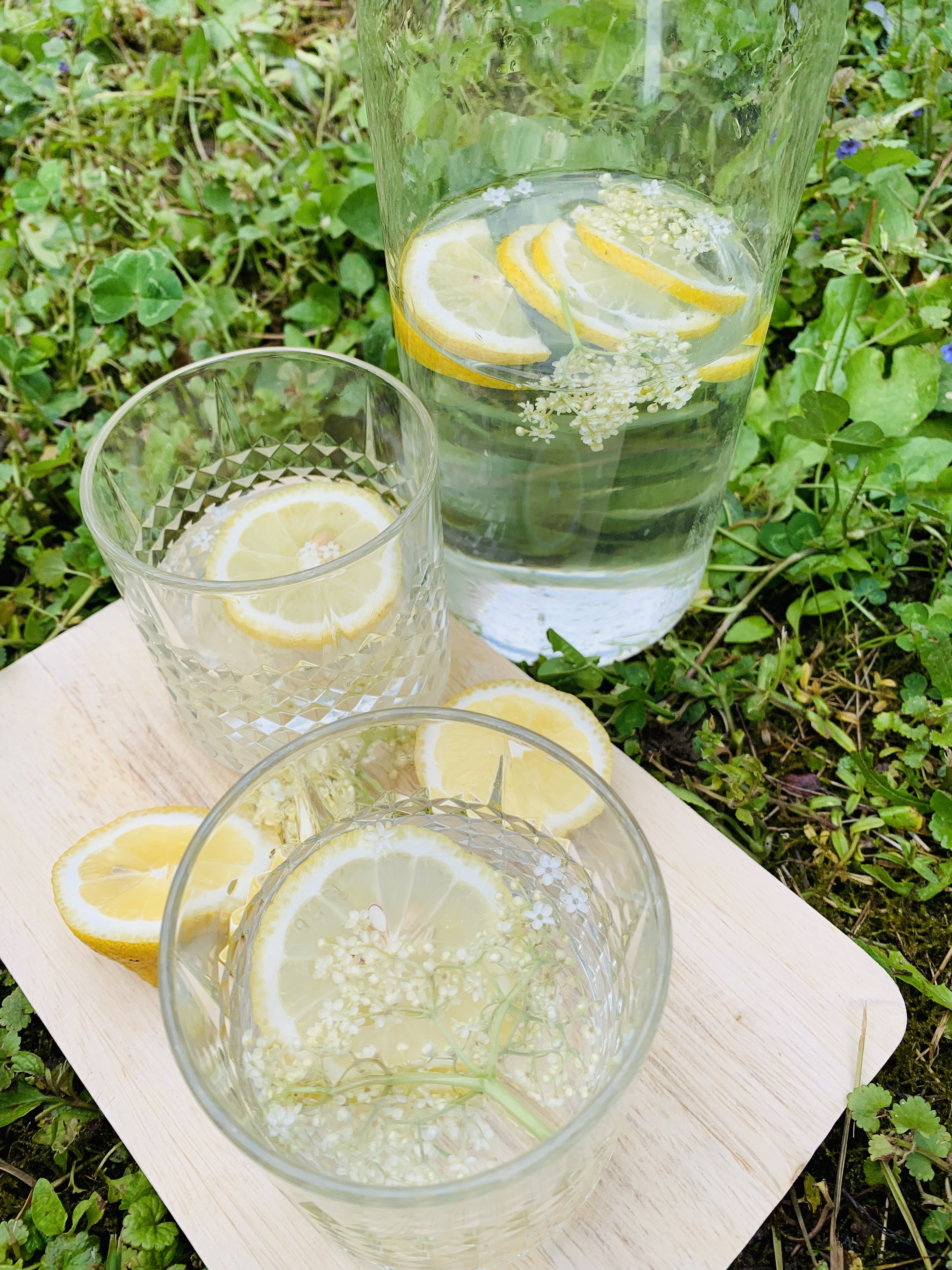 Picture of elderflower 0 calories and 0 carbs drink on the grass in the garden