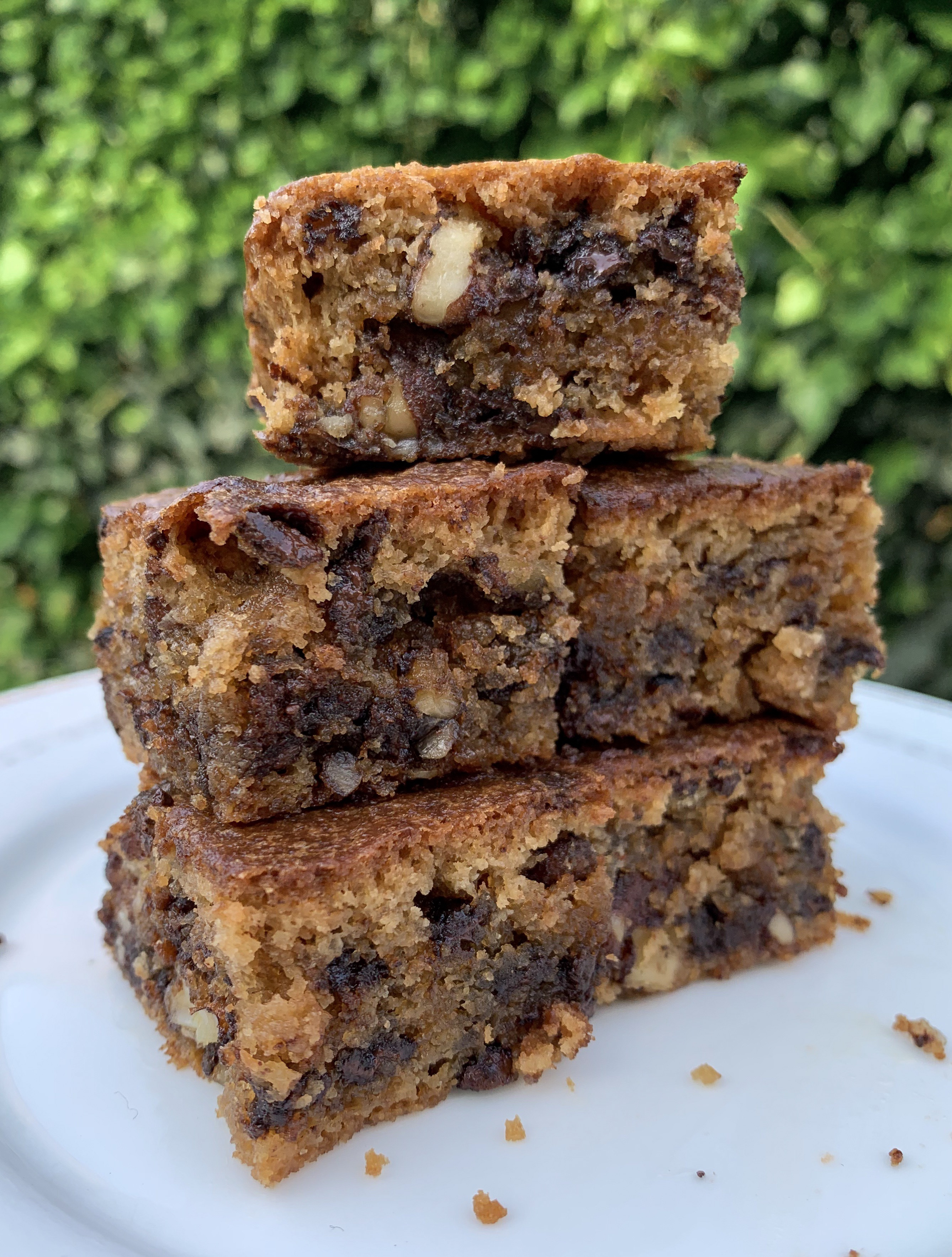 Picture of keto blondies cakes in the garden